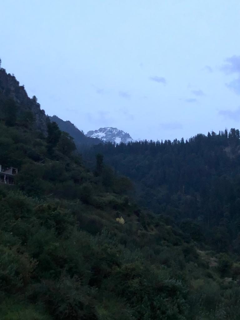 A night at Tosh in parvati valley
